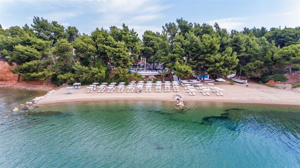Халкидики - самый зеленый регион Греции