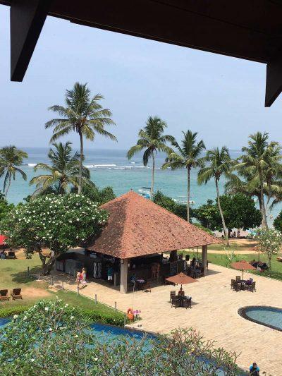 Шри-Ланка вид из окна